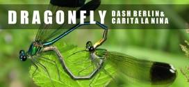 Dash Berlin & Carita La Nina – Dragonfly