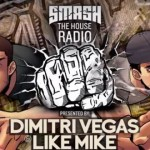 Dimitri Vegas & Like Mike - Smash The House 45